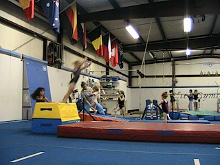 an introduction to the importance of the usage of motor skills in gymnastics An introduction to primary physical education  importance of gymnastics in primary physical  motor development and social skills.